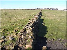 NZ3475 : Old wall at Hartley by Oliver Dixon