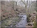 NY9258 : The Ham Burn near Whitley Mill by Les Hull
