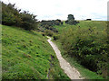 SU7120 : Path on Butser Hill by Chris Gunns