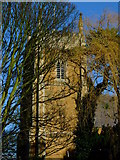 SK8333 : St James's Church Woolsthorpe By Belvoir taken from the garden of Reading Room Cottage by Mark Holland