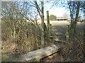 TQ8932 : Footbridge and stile near Belcot Manor Farm by David Anstiss