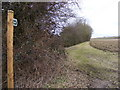 TM3569 : Footpath to Mill Road & Heveningham Long Lane by Adrian Cable