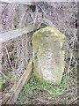 NZ2920 : A marker stone by Brafferton rail bridge by Stanley Howe