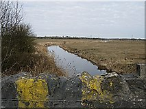 N3842 : River Brosna by kevin higgins