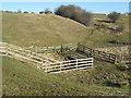 NZ4129 : Cattle bridge at Embleton by peter robinson