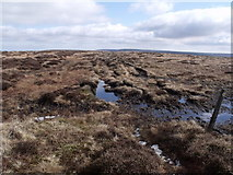 SD9834 : Path across Middle Moor by Nigel Homer