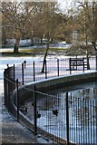 TM1645 : The Round Pond, Christchurch Park by Simon Mortimer
