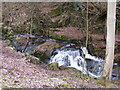 SO7699 : Badger Dingle Waterfall by Gordon Griffiths