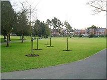 J3271 : Drumglass Park, Belfast by Dean Molyneaux