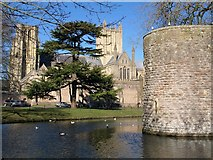 ST5545 : Corner of moat, Wells by Derek Harper