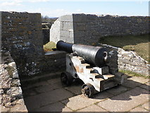 SX9456 : Cannon, on the ramparts, at Berry Head by Roger Cornfoot