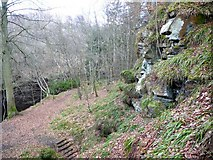 NZ0886 : Location of Hartburn Grotto by Andrew Curtis