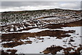 NN5861 : Moorland, SW of Aulich Burn, Loch Rannoch by David G Campbell
