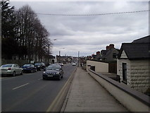 N6232 : St Mary St, Edenderry, Offaly by C O'Flanagan