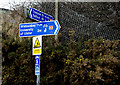 J3581 : National Cycle Network sign, Whitehouse by Albert Bridge