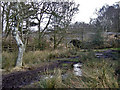 SP0998 : Muddy path and railway bridge by Row17