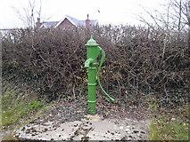N9958 : Water pump, Co Meath by C O'Flanagan