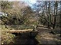 SX0854 : Bridge, Treesmill Valley by Derek Harper