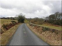 C2123 : Road near Gallaghers Glen by Kenneth  Allen