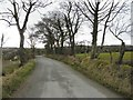 C2016 : Road at Aughalenty by Kenneth  Allen