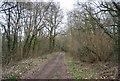 TQ6636 : Footpath through Weir Field Shaw by N Chadwick