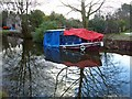 SJ3135 : Sinking Boat at St Martin's Moor by Linnet