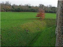 TM2863 : Framlingham Castle moat and Castle Meadow by Chris Gunns