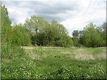 SU6269 : Meadow by Tyle Mill lock by Sandy B