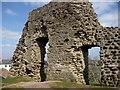 SZ1592 : Christchurch - Castle by Chris Talbot