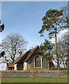 TM1581 : St Andrew's church in Thelveton, viewed from the east by Evelyn Simak