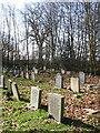 TM1581 : St Andrew's church - churchyard by Evelyn Simak