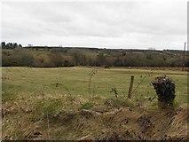 C1608 : Ballyboe Townland by Kenneth  Allen