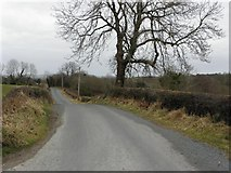 C1708 : Road at Ballyboe by Kenneth  Allen