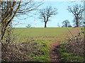 SO7890 : Bridleway near Gatacre Green, Shropshire by Roger  Kidd