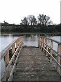 SP3365 : Bridge to nowhere by David P Howard