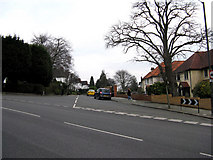 TQ3060 : Purley:  Downlands Road by Dr Neil Clifton