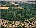 TQ8187 : Aerial view of Hadleigh Great Wood (Belfairs Nature reserve) by Edward Clack