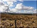 C0601 : Wind farm, Moneenashasragh by Kenneth  Allen
