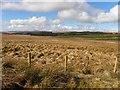 C0603 : Culliagh Townland by Kenneth  Allen