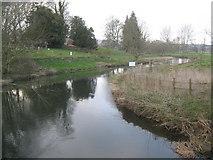 TR0650 : Great Stour River near Godmersham by David Anstiss
