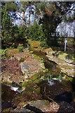 SJ7243 : Water Garden display at Bridgemere Garden World by Steve Daniels