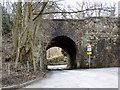 SD7704 : Doe Brow Bridge by David Dixon