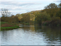 SP4508 : River Thames downstream of Eynsham Lock by Chris Gunns