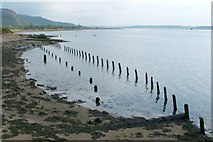 NS4074 : Posts on the shore by Lairich Rig