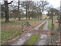 SU6550 : Cattle grid - Hackwood Park by Given Up