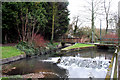 TQ3065 : Beddington:  Confluence of mill stream with main River Wandle by Dr Neil Clifton