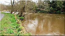 J3470 : The Lagan near Stranmillis, Belfast by Albert Bridge