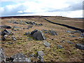 NY8615 : Gritstone boulders by Karl and Ali