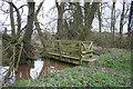 SJ6456 : Footbridge over stream, near Poole Old Hall by Espresso Addict