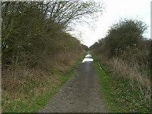 SE9742 : The Hudson Way towards Beverley by JThomas